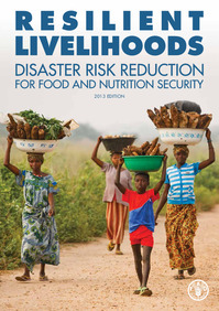 Resilient Livelihoods: Disaster Risk Reduction for food and nutrition security