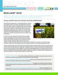 Resilient Rice