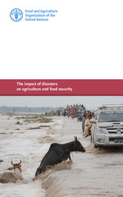 Flood Catalog: The impact of disasters on agriculture and